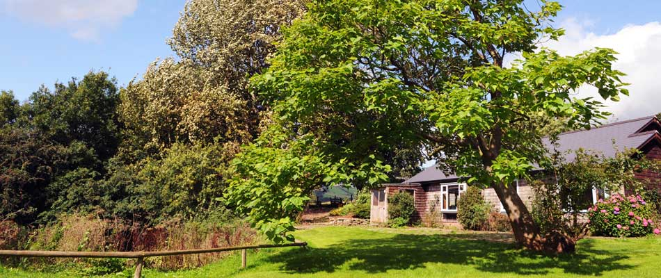 Longlands Cottage in Hay-on-Wye